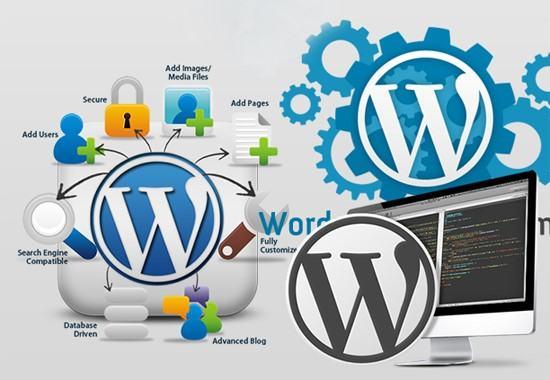 Tổng hợp các công cụ đánh giá tạo website riêng chuẩn SEO